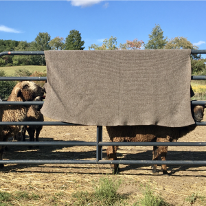EBF Knit Blanket